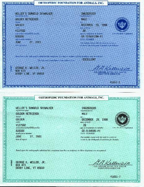 Skywalker ofa certificates