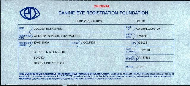 Skywalker eye registration